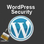 7 WordPress Gurus Revealed Their Best Tip to Handle WordPress Security